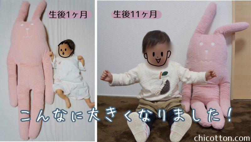 0歳の赤ちゃんとぬいぐるみ