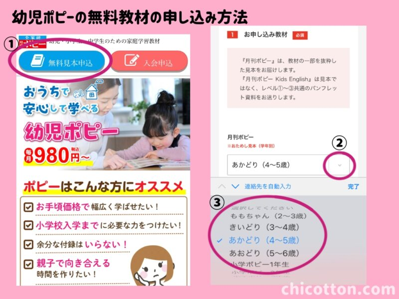 幼児ポピー無料教材の申し込み方法